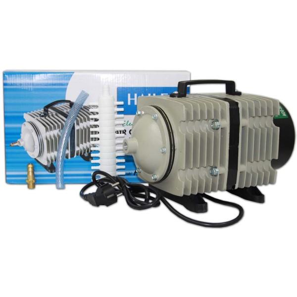 Hailea ACO-500 Kolbenkompressor 175W - 6920255810107 | © by gartenteiche-fockenberg.de